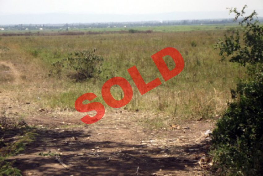 Land on Miwani Road