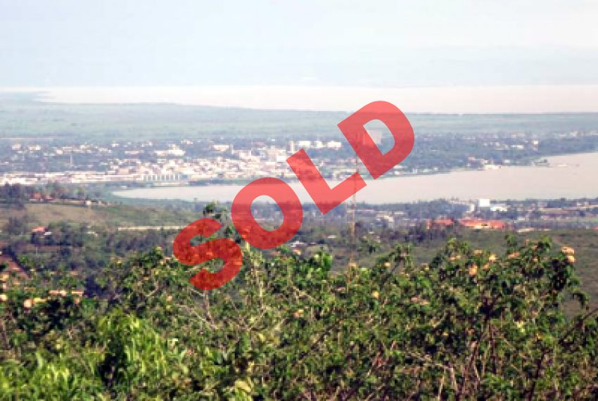 Land on Dago Hilltop