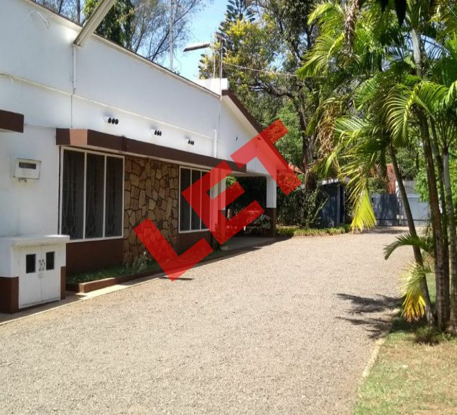 Nehru Road House to let in Milimani